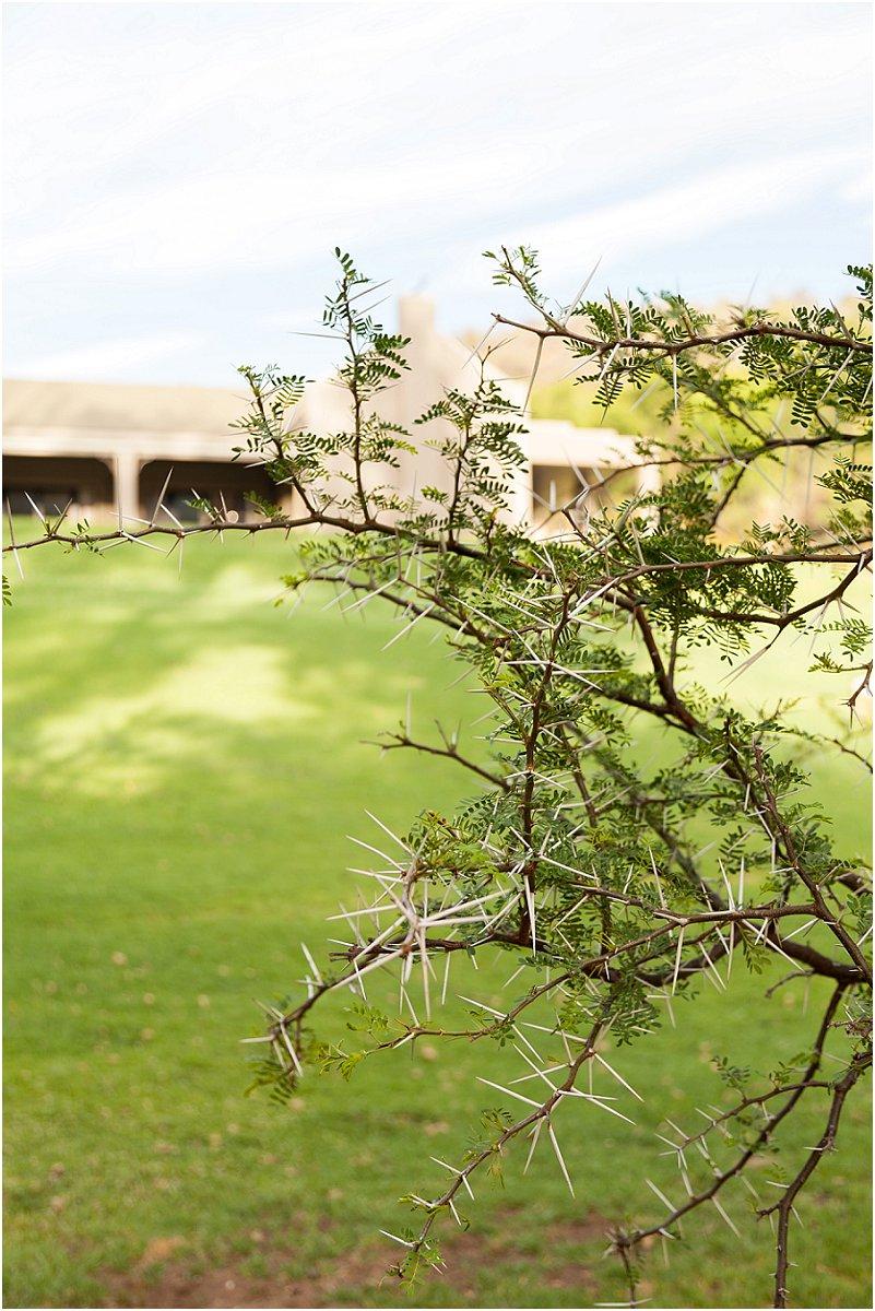 wildehondekloof game reserve